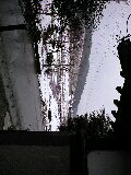 100325_1528~0001.jpg